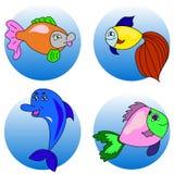 Set fish. Morecambe residents, many fish. dolphin cards. cartoon style Stock Photography