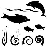 Fish silhouettes vector set 1. Set of fish and shell silhouettes isolated on white Stock Photos