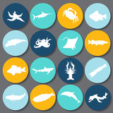 Set of fish silhouette icon. stock  Stock Images