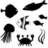 Fish silhouettes vector set 3. Set of fish silhouettes isolated on white Stock Photo