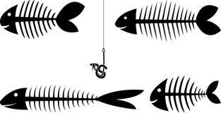 Set of fish skeletons Royalty Free Stock Image