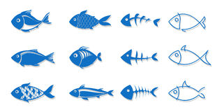 Set of fish for your design. Set of silhouettes of fish for your design,  illustration Royalty Free Stock Images