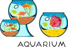 Set of fishbowl Royalty Free Stock Photos