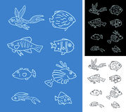 Set of fishes Royalty Free Stock Photography