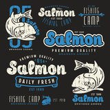 Set of fishing labels in retro style Royalty Free Stock Photo