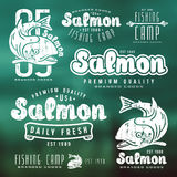 Set of fishing labels in retro style Stock Images
