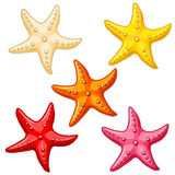 Set five color starfish on white. Set five multi-colored cheerful cute starfishes on a white background. Red, yellow, beige, pink and orange cartoon starfishes Stock Photo