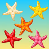 Set five color starfish on yellow-blue. Five multi-colored cheerful cute starfishes on a blue-yellow background. Red, yellow, pink, biege and orange cartoon Royalty Free Stock Image