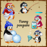 Set of five funny penguins with his hobby Royalty Free Stock Images