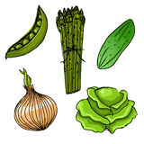 Set of five hand drawn vegetables Royalty Free Stock Photos