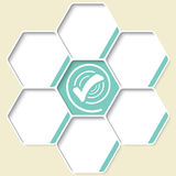 Set of five hexagons Royalty Free Stock Images