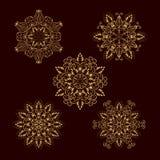 Set from five Vector Gold Floral Mandalas Stock Photos