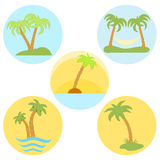 Set of five vector icons with palm trees Royalty Free Stock Photos