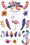 Set of flamingo stock illustration