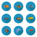 Set of flat aquarium fish icons. In vector format Stock Photography