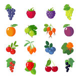 Set of flat berries. Royalty Free Stock Photography