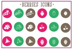 Set of flat berries icons - white, outline print Stock Images