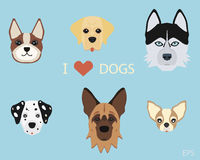 Set of flat cute cartoon dogs. German Shepherd, Siberian Husky, Dalmatian, Boston Terrier, Labrador Retriever & Chihuahua. Flat style design isolated icons Stock Image