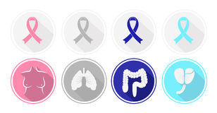 Set of flat design Cancer and human organ icons. Royalty Free Stock Images