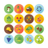 Set of flat design circle icons for fruits, vegetables and  mushrooms. Stock Photos