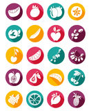 Set of flat design doodle icons for fruits with shadow Stock Photos