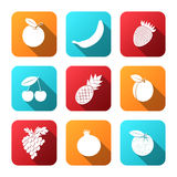 Set of flat design icons for fruit. Stock Images