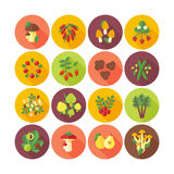 Set of flat design icons for fruits and vegetables. Circle icons with long shadow royalty free illustration