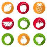 Set of flat design icons for fruits on white background vector Stock Images