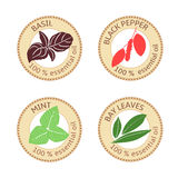 Set of flat essential oil labels. 100 percent. Bay leaves, basil, black pepper, mint Royalty Free Stock Image