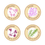 Set of flat essential oil labels. 100 percent. Oregano, Thyme, marjoram, rosemary Royalty Free Stock Photography