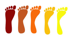 Set of flat feet Royalty Free Stock Image