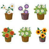 Set with flat flowers in pots. Vector illustration stock illustration