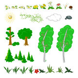 Set of flat forest elements. Include grass, flowers, mushrooms, berries, bushes, trees and sun Royalty Free Stock Photos