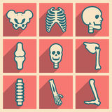 Set flat icons with long shadow human skeleton Stock Photography