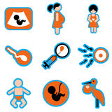 Set flat icons with long shadow pregnancy Royalty Free Stock Photography