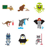 Set of flat icons on  white background animals Stock Image