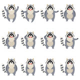 Set of flat raccoon icons Royalty Free Stock Images