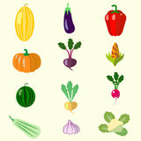 Set of flat style vegetables: melon, squash, beets. Stock Photo
