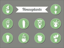 Set of flat vector icons. House plants.Illustration Royalty Free Stock Photography