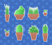 Set of flat vector stickers with  plants Stock Image