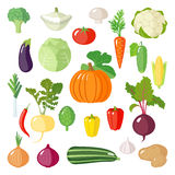 Set of flat vegetables. Royalty Free Stock Photo