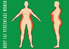 Set of flat women before and after diet vector illustration. Fat and slim girl. Stock Image