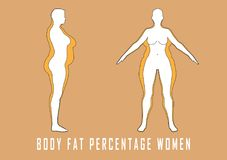 Set of flat women before and after diet vector illustration. Fat and slim girl. Royalty Free Stock Image