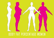 Set of flat women before and after diet vector illustration. Fat and slim girl. Stock Photos