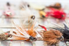 A set of flies. A set of fly fishing flies in a tackle box stock photo