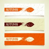 Set floral autumn banners Royalty Free Stock Photo