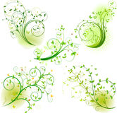 Set of floral background Stock Photography