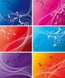 Set Floral background Stock Images