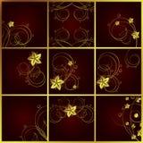 Set of floral backgrounds. A illustration for your design project Vector Illustration