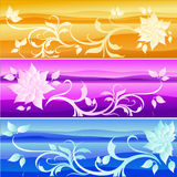 Set of floral backgrounds. Illustration Stock Image